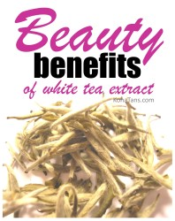 The Beauty Benefits of White Tea Extract