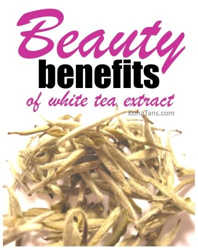 The Beauty Benefits of White Tea Extract  |  KonaTans.com